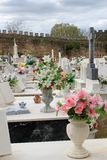 Colorful flowers on graves Stock Photography