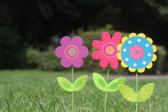 Colorful flowers with green leaves stand in green grass of a garden Royalty Free Stock Photos
