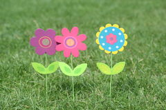 Colorful flowers with green leaves stand in green grass of a garden Royalty Free Stock Images