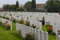 Colorful Flowers Honor WWI Graves Stock Image