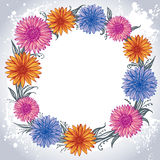 Colorful flowers laid out in a circle Stock Image