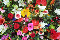 Colorful flowers in large bouquet Royalty Free Stock Photography