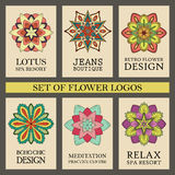 Colorful Flowers Logos Set Stock Photography