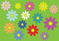 Colorful flowers. That make a carpet on green background Stock Images