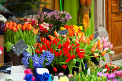 Colorful flowers on market Royalty Free Stock Image