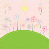 Colorful flowers on the meadow under the sun. Royalty Free Stock Photos
