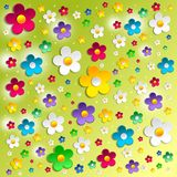 Abstract flower background. Colorful flowers over green shiny background Royalty Free Stock Image