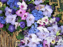 Colorful flowers pattern Royalty Free Stock Image