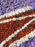 Colorful flowers pattern Royalty Free Stock Photo