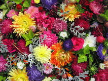 Colorful flowers pattern Stock Images