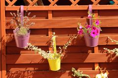 Colorful flowers in pots hung on a wooden fence Stock Photo