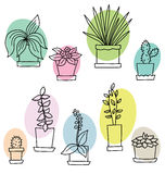 Colorful flowers in pots. Vector illustration. Colorful flowers in pots isolated on white. Vector illustration stock illustration