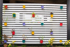 Colorful flowers pots on the wall. Colorful flowers pots hang on the wall Stock Photography