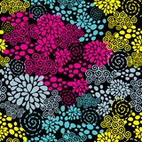 Colorful flowers seamless pattern. Stock Image