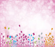 Colorful Flowers. For seasons Royalty Free Stock Photo