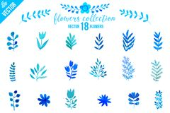Colorful flowers set. Leaves. Vector illustration.vector set of red autumn watercolor leaves and berries, hand drawn design elemen Royalty Free Stock Images
