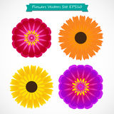 Colorful flowers setvector illustration Royalty Free Stock Images