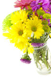 Colorful Flowers For Special Occasions Royalty Free Stock Images