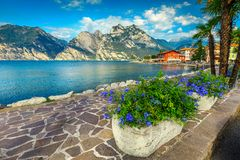Colorful flowers and spectacular promenade, lake Garda, Torbole, Italy, Europe. Breathtaking promenade decorated with colorful mediterranean flowers. Wonderful stock photography