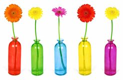 Colorful flowers in vases Stock Images