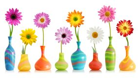 Colorful flowers in vases Stock Photos