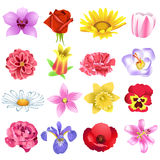 Colorful flowers. Vector collection of beautiful flowers isolated on a white background Stock Photography