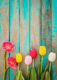 Colorful flowers on vintage wooden background, Royalty Free Stock Photos