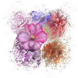 Colorful Flowers Watercolor Royalty Free Stock Photography