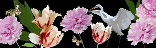 Colorful flowers and white heron border Royalty Free Stock Images
