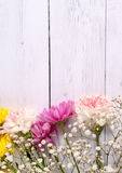 Colorful flowers white wood background Stock Photos