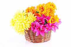 Colorful flowers in wooden basket. White background Royalty Free Stock Images