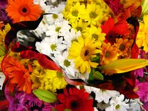 Colorful flowery background Stock Photo