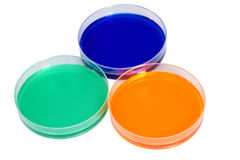 Colorful fluid in dishes for laboratory use Royalty Free Stock Photo