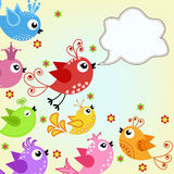 Colorful, flying birds Stock Photo