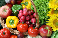 Colorful food Royalty Free Stock Photography