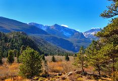 Colorful forest and meadow  in Rocky Mountain National Park Royalty Free Stock Photography