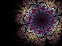 Colorful fractal flower Stock Photos