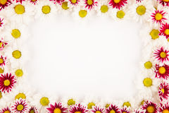 Colorful frame Stock Image