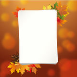 Colorful frame of fallen autumn leaves Royalty Free Stock Photo