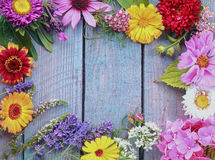 Colorful frame of fresh summer flowers Stock Photography