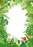 Colorful Frame with Tropical Plants. Colorful leaves and flowers of tropical plants background. Vertical floral frame with space for text. Tropic rainforest Royalty Free Stock Photo