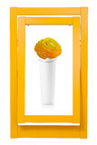 Colorful frame and vase Royalty Free Stock Photos