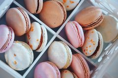 Colorful French dessert macarons. Dessert macaroons. Colorful macaroons in white wooden box royalty free stock photos