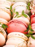 Colorful french macarons background, close up.Different colorful macaroons background.Tasty sweet color macaron,Bakery Royalty Free Stock Photo