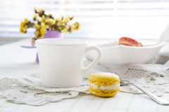Colorful french macaroons in white dish with soft vintage color Royalty Free Stock Photos