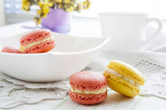 Colorful french macaroons in white dish with soft vintage color Stock Photography