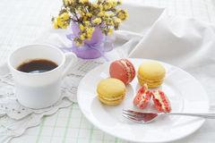 Colorful french macaroons in white dish with soft vintage color Stock Photos