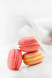 Colorful French pastry on a white background. Royalty Free Stock Photography