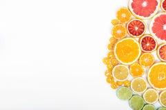 Colorful fresh citrus fruit on white background. Orange, tangeri Stock Images