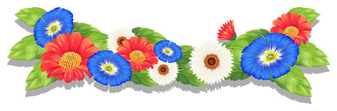 Colorful fresh flowers Stock Images